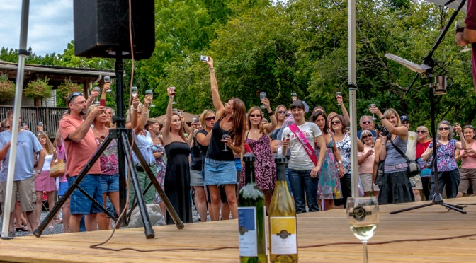 Black Walnut Winery – World Record?