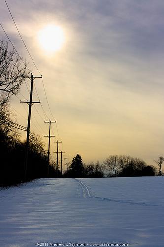 110204 Rt 401 Field 001 - Cross County ski tracks