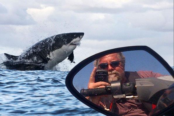 Skip with Shark 2