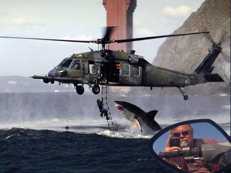 Skip with Shark 3