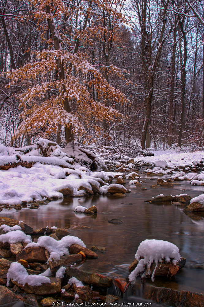Snow Stream hdr 13 (2011)