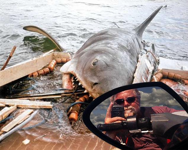Skip's Jaws