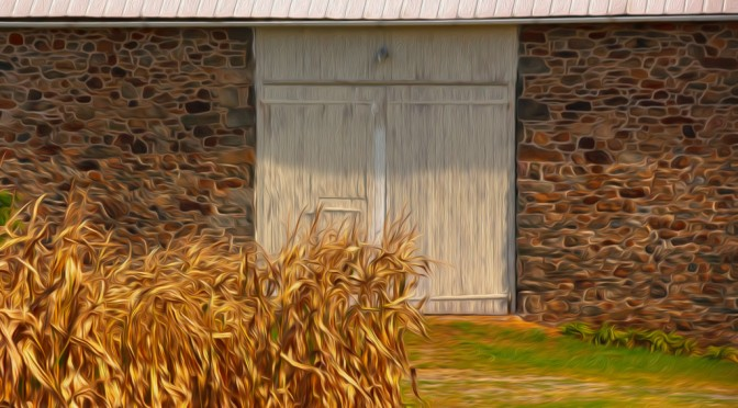 Barn door with corn stalks – Digital Art