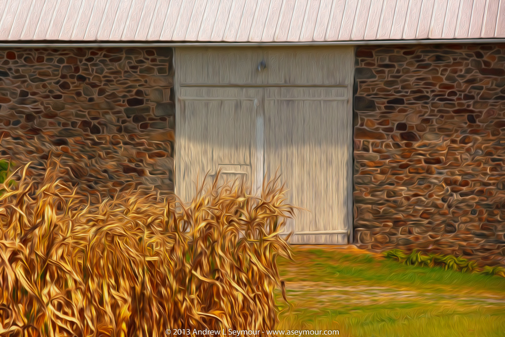 Barn door with corn stalks - Digital Art