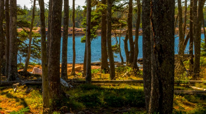 Wonderland Trail – Acadia NP