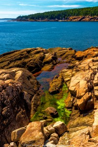 Ocean Path 047