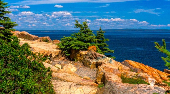 Ocean Path – Acadia NP
