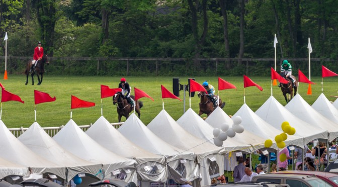 Steeplechase of 2015 Radnor Hunt Races